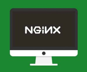 Learn Nginx By Example