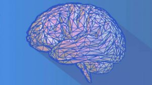 Neuroscience synthesis to rewire your brain free download - freecoursessites.com