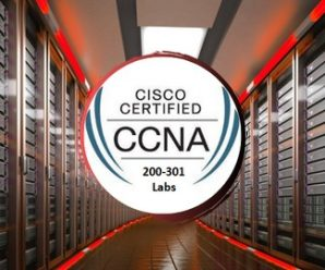 Cisco CCNA 200-301 Configuration Labs With Packet Tracer
